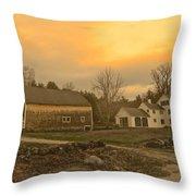 Soft Evening Light Throw Pillow