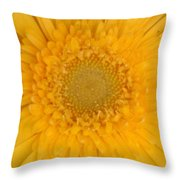 Soft Explosion Throw Pillow