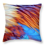 Soft Feather Palette Throw Pillow