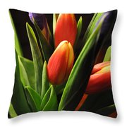 Soft Fireworks Throw Pillow