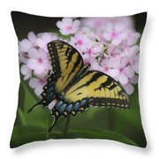 Soft Focus Tiger Swallowtail Throw Pillow