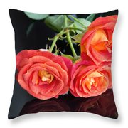 Soft Full Blown Red-orange Roses On Black Background. Throw Pillow
