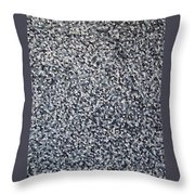 Soft Grey Scale  Throw Pillow