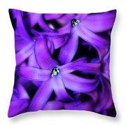 Soft Hyacinth Throw Pillow