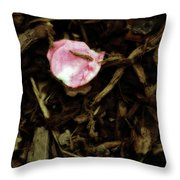 Soft Landing Throw Pillow by Bonnie Bruno