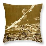 Soft Landing Throw Pillow