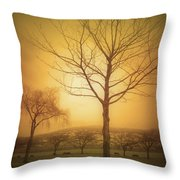 Soft Light In Summerland Throw Pillow