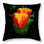 Soft Light Iv Throw Pillow