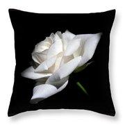 Soft Light White Rose Flower  Throw Pillow
