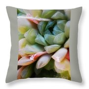 Soft Natural Succulents Throw Pillow