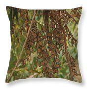 Soft Opening Throw Pillow