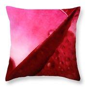 Soft Petaling Throw Pillow
