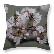 Soft Pink Blossoms Throw Pillow