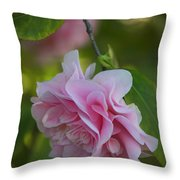 Soft Pink Camellia Throw Pillow