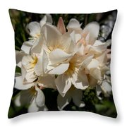 Soft Pink Throw Pillow