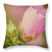 Soft Pink Flower Throw Pillow