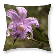 Soft Pink One-day Orchid With Droplets Of Dew Throw Pillow