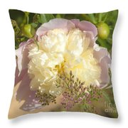 Soft Pink Peony Photography Throw Pillow