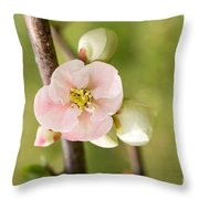Pink Quince Blossom Throw Pillow