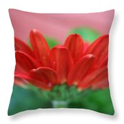 Soft Red Throw Pillow