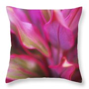 Soft Red Ti Throw Pillow