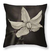 Soft Sepia Bloom Throw Pillow