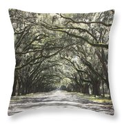 Soft Southern Day Throw Pillow
