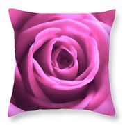 Soft Touch Pink Rose Throw Pillow