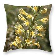 Soft Yellow Desert Flowers Throw Pillow