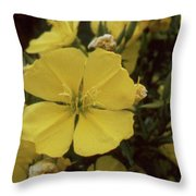 Soft Yellow Flowers Throw Pillow