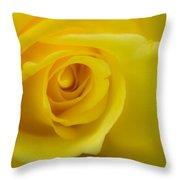 Soft Yellow Rose Throw Pillow