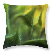 Softabstractsunflower Throw Pillow