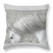 Softly Swept Throw Pillow