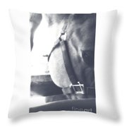 Softly Detailed Throw Pillow