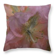 Softly Pink  Throw Pillow
