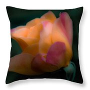 Softly Pouting Throw Pillow