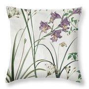 Softly Purple Crocus Throw Pillow