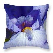 Softly Purple Throw Pillow