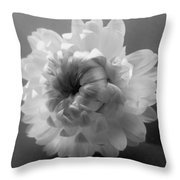 Softly Romantic Throw Pillow