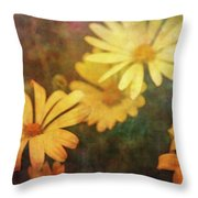 Softly Yellow 9122 Idp_2 Throw Pillow
