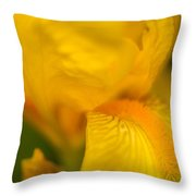 Softly Yellow Throw Pillow