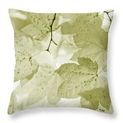 Softness Of Olive Green Maple Leaves Throw Pillow