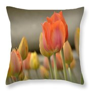 Softness Of Spring Throw Pillow