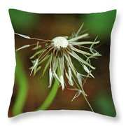 Soggy Dandelion Throw Pillow