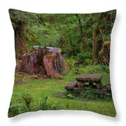 Soggy Picnic Throw Pillow