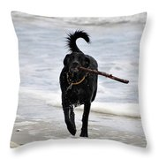 Soggy Stick Throw Pillow