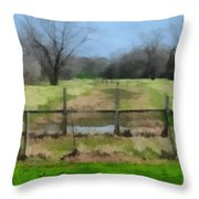 Soggy Texas Bayou Throw Pillow