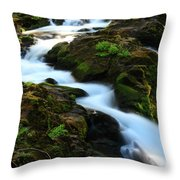 Sol Duc Falls 2 Throw Pillow