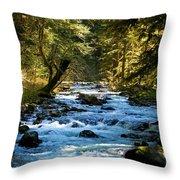 Sol Duc River Above The Falls - Washington Throw Pillow