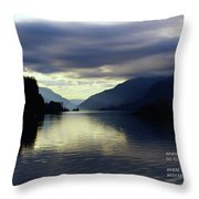 Solace  Throw Pillow